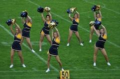 Cheerleader waving poppoms Stock Images