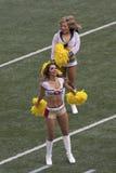 Cheerleaderkumpel Stockbilder