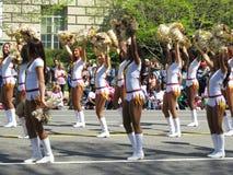 Cheerleaders bij het Festival Stock Fotografie