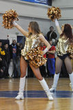 Cheerleaders are dancing on the court Royalty Free Stock Photography