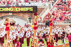 cheerleaders Florida stan uniwersytet Zdjęcie Stock