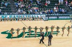 Cheerleaders in usf mens basketball game vs smu Stock Photo