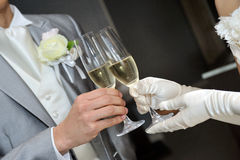 Cheers. Inspiring the bride and groom, toast scene Royalty Free Stock Photo