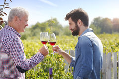 Cheers in vineyard Stock Photography