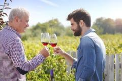 Cheers in vineyard Stock Photography