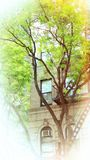 Cheery Apartment Building. A cheery apartment building with winding trees Royalty Free Stock Photos
