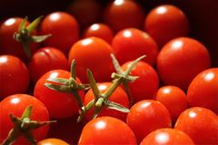 Cheery tomato Royalty Free Stock Photography