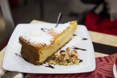 Chees tort z wysuszonym - owoc i czekoladowy łasowania outdore w ślicznym miejscu obrazy royalty free