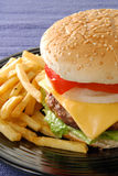 Cheesburger and fries. A juicy cheeseburger with French fries Stock Images