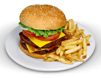 Cheesburger and Fries Stock Images
