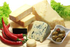 Cheese. Stock Images