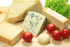 Cheese. Royalty Free Stock Photos