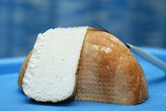 Cheese. Traditional romanian cheese with a great taste Royalty Free Stock Photo