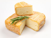 Cheese. And rosemary on white background Stock Photos