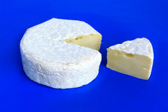 Cheese. Cheese with white mold Royalty Free Stock Photo