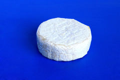 Cheese. Cheese with white mold Royalty Free Stock Photos