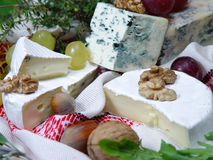 Cheese. 's plate Royalty Free Stock Image
