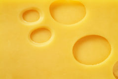 Free Cheese Stock Photos - 947593