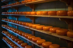 Cheese in Amsterdam, Netherlands Royalty Free Stock Photography