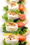Cheese appetizers Stock Images