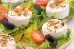 Cheese appetizers Royalty Free Stock Photography