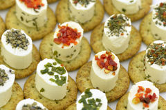 Cheese appetizers decorated with spices Royalty Free Stock Images