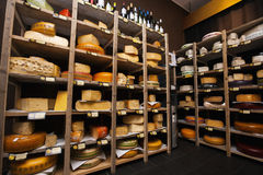 Cheese arranged in shelves at store Stock Photography