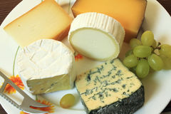 Cheese assortment Stock Images