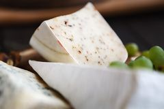 Different sorts of cheese, food background Stock Photos