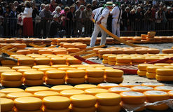 Cheese auction. On the market in Alkmaar, Netherlands. This traditional spectacle is every friday in summer and you can always find a lot of tourists. Foto was Royalty Free Stock Images