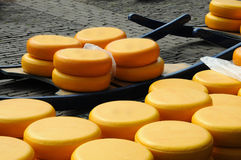 Cheese auction Royalty Free Stock Photography