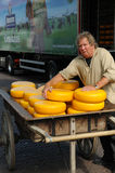 Cheese auction Stock Image