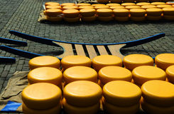 Cheese auction. On the market in Alkmaar, Netherlands Stock Photos