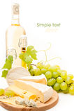 Cheese background Stock Photos