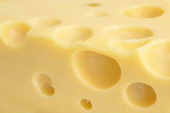 Cheese background Royalty Free Stock Image