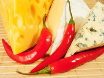 Cheese background Stock Images