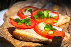 Cheese baguette with tomato Royalty Free Stock Photo