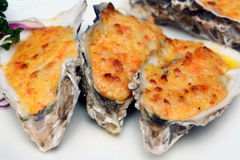 Cheese-Baked Oysters Royalty Free Stock Photo