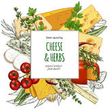 Cheese banner, hand drawn vector sketch. Full color realistic cheese banner, hand drawn vector sketch illustration, poster design for restaurants Royalty Free Stock Photos