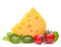 Cheese and basil leaves still life Royalty Free Stock Photos