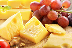 Cheese board yellow cheese composition Stock Images