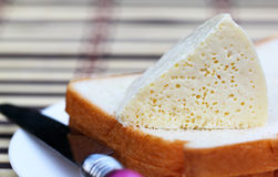 Cheese with bread and kitchen knife Stock Image