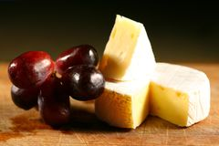 Cheese brie royalty free stock photo