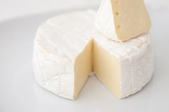 Cheese brie Stock Image