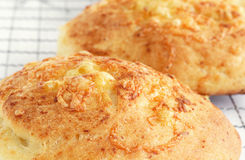 Cheese buns Stock Photography