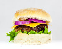 Cheese Burger. Handmade Cheese Burger with red onion and lettuce Stock Image