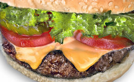 Cheese burger closeup. Cheese burger close up on white background Stock Photos