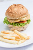 Cheese burger and  french fries Royalty Free Stock Photo