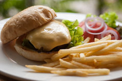 Cheese burger with French fries Royalty Free Stock Photo