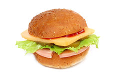 Cheese Burger with meat Royalty Free Stock Image